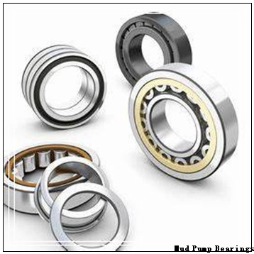 9836 Mud Pump Bearings