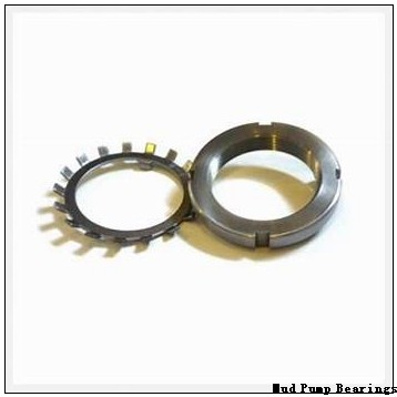 929/673.1Q Mud Pump Bearings