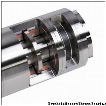 10345-RIT Downhole Motors Thrust Bearing