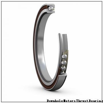 215-ADA- Downhole Motors Thrust Bearing