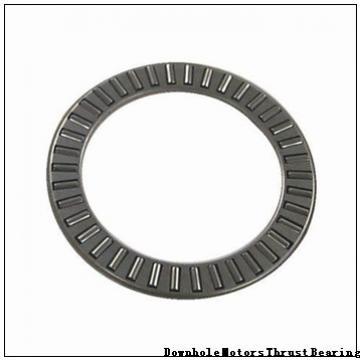 254936QU1 Downhole Motors Thrust Bearing
