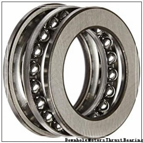 60/500/P6S1 Downhole Motors Thrust Bearing #1 image
